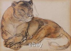 Camille Roche Drawing Art Deco Art Animalier Lion Lione Fau Tableau Aquarelle