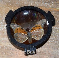 1ère Coupelle en fer forgé et aile de papillon Art Deco signée BUTTERFLY