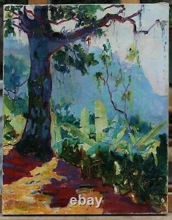Rio Janeiro Brésil, Paul GAGARIN (1885-1980), Pavel Konstantinovich GAGARIN, russe